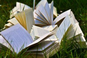 pixabay-books-2241631_1280
